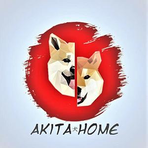 exposant-angersgeekfest-akita home